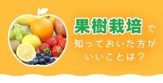果樹栽培のお仕事を始める時に知っておいた方がいいことは?