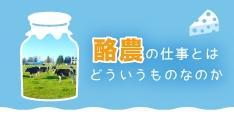 酪農の仕事とはどういうものなのか