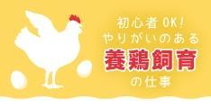 初心者OK!安心サポートでやりがいのある養鶏飼育の仕事